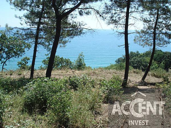 b04570170bf Парцел с морска панорама и борови дървета на 100 м. от плажа на ...